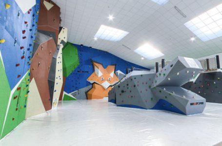 campamentos de escalada: indoorwall